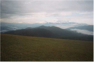 View from Max Patch Summit